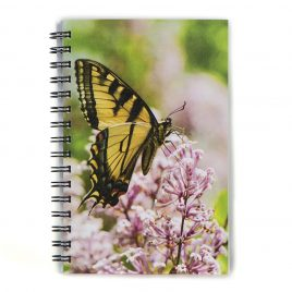Butterfly – Notebook