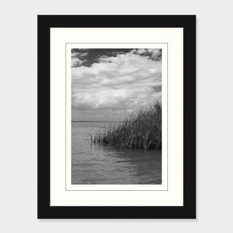 Maumee-Bay-State-Park-Framed