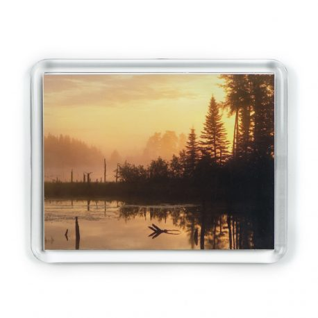 Misty Morning – Magnet