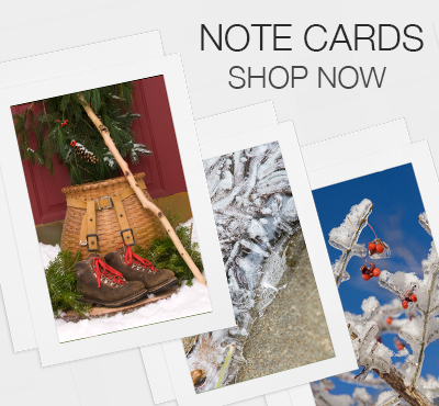 Photography Art Note Cards