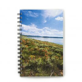 Colorado Landscape – Notebook