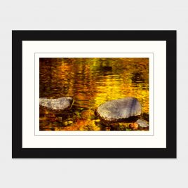 Adirondack Stream Fall Reflections – Print