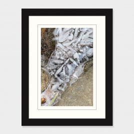 Ice Details – Print