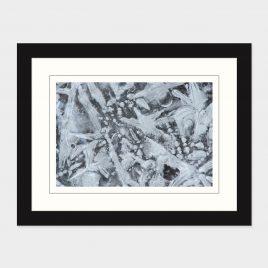 Ice Details II – Print