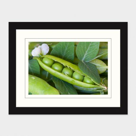Peas-in-a-Pod-Framed
